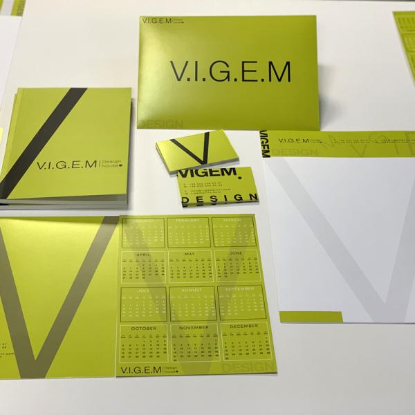 """Корпоративный стиль """"VIGEM"""""""
