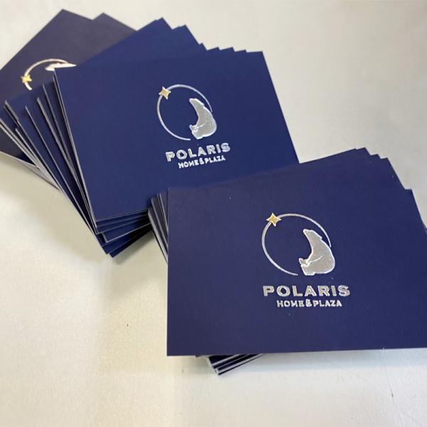 Бизнес полиграфия Polaris